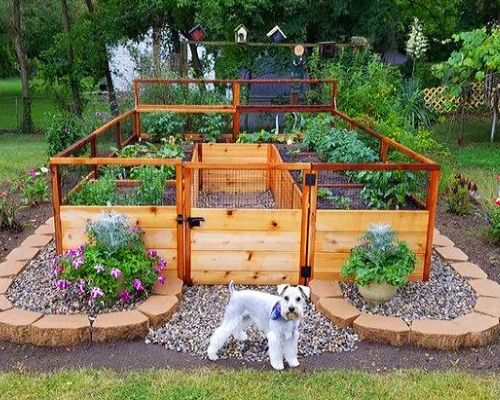 7 Common Raised Garden Bed Mistakes (Part 1)